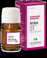 Lehning Arnica Complexe N° 1 Solution Buvable En Gouttes Fl/30ml à SAINT-MARCEL