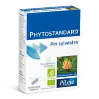 Pileje Phytostandard - Pin Sylvestre 20 Gélules Végétales à SAINT-MARCEL