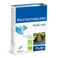 Pileje Phytostandard - Radis Noir 20 Gélules Végétales à SAINT-MARCEL