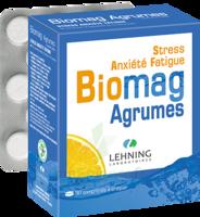 Lehning Biomag Comprimés à Croquer Agrumes B/90 à SAINT-MARCEL