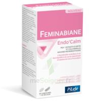 Pileje Feminabiane Endo'calm Comprimés + Gélules B/60+30 à SAINT-MARCEL