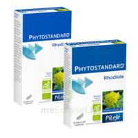 Pileje Phytostandard - Rhodiole 20 Gélules Végétales