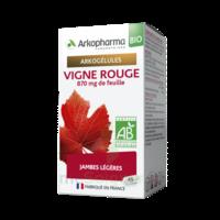 Arkogélules Vigne Rouge Bio Gélules Fl/45 à SAINT-MARCEL