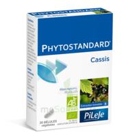 Pileje Phytostandard - Cassis 20 Gélules Végétales à SAINT-MARCEL