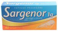 Sargenor Sans Sucre 1 G, Comprimé Effervescent 2t/20 (40) à SAINT-MARCEL