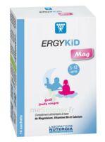 Ergykid Mag Poudre Solution Buvable 14 Sachets à SAINT-MARCEL