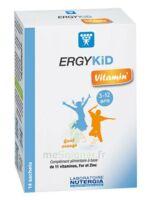 Ergykid Vitamin' Poudre Solution Buvable 14 Sachets