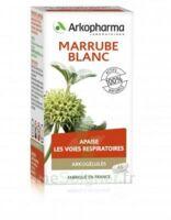 Arkogélules Marrube Blanc Gélules Fl/45