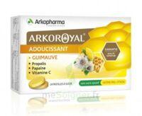 Arkoroyal Propolis Pastilles Adoucissante Gorge Guimauve Miel Citron B/24 à SAINT-MARCEL