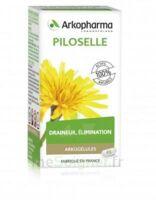 Arkogélules Piloselle Gélules Fl/45 à SAINT-MARCEL