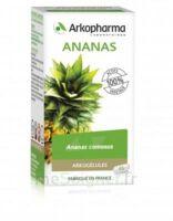 Arkogélules Ananas Gélules Fl/45 à SAINT-MARCEL
