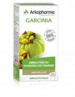 Arkogélules Garcinia Gélules Fl/45 à SAINT-MARCEL