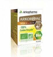 Arkoroyal 100% Gelée Royale Bio Gelée Pot/40g à SAINT-MARCEL