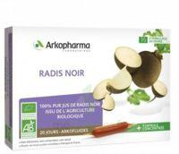 Arkofluide Bio Ultraextract Radis Noir Solution Buvable 20 Ampoules/10ml à SAINT-MARCEL