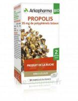 Arkogélules Propolis Bio Gélules Fl/45 à SAINT-MARCEL