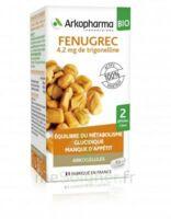 Arkogélules Fenugrec Bio Gélules Fl/40 à SAINT-MARCEL