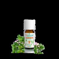 Puressentiel Huiles Essentielles - Hebbd Thym à Thujanol Bio* - 5ml à SAINT-MARCEL