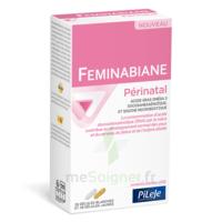 Pileje Feminabiane Périnatal 28 Gélules Blanches Et 28 Gélules Jaunes à SAINT-MARCEL
