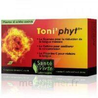 Toni'phyt Sante Verte X 30 Comprimes à SAINT-MARCEL