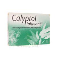 Calyptol Inhalant, émulsion Pour Inhalation Par Fumigation à SAINT-MARCEL