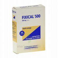 Fixical 500 Mg, Comprimé à Croquer Ou à Sucer à SAINT-MARCEL