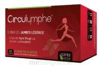 Santé Verte Circulymphe Triple Actions B/30 à SAINT-MARCEL