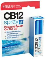 Cb 12 Spray Haleine Fraîche 15ml à SAINT-MARCEL