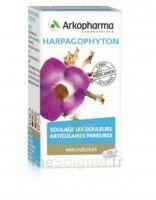 Arkogelules Harpagophyton Gélules Fl/45 à SAINT-MARCEL