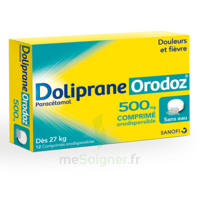Dolipraneorodoz 500 Mg, Comprimé Orodispersible à SAINT-MARCEL