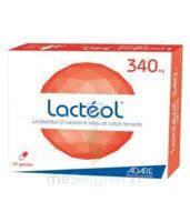 Lacteol 340 Mg, 10 Gélules à SAINT-MARCEL