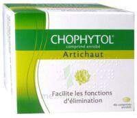 Chophytol Cpr Enr 6plaq/30 à SAINT-MARCEL