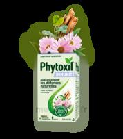 Phytoxil Immunité Gélules B/40 à SAINT-MARCEL