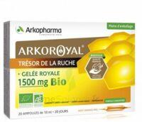 Arkoroyal Gelée Royale Bio 1500 Mg Solution Buvable 20 Ampoules/10ml à SAINT-MARCEL