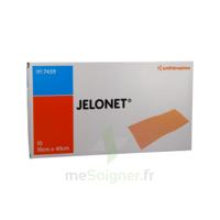 Jelonet, 10 Cm X 40 Cm , Bt 10 à SAINT-MARCEL