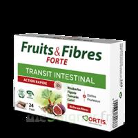 Ortis Fruits & Fibres Forte Cube à Mâcher B/24 à SAINT-MARCEL