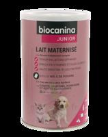 Biocanina Lait Poudre Maternisé B/400g à SAINT-MARCEL