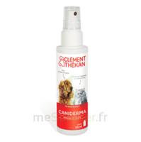 Clément Thékan Caniderma Solution Externe Cicatrisant Spray/125ml à SAINT-MARCEL