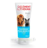 Clément Thékan Shampooing Peaux Sensibles T/200ml à SAINT-MARCEL