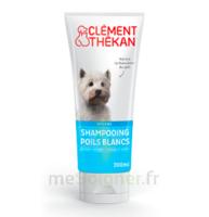 Clément Thékan Shampooing Poils Blancs T/200ml à SAINT-MARCEL