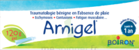 Boiron Arnigel Gel T/120g à SAINT-MARCEL