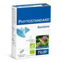Pileje Phytostandard - Bardane 20 Gélules Végétales à SAINT-MARCEL
