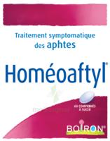 Boiron Homéoaftyl Comprimés à SAINT-MARCEL