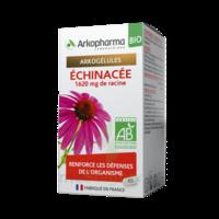 Arkogelules Echinacée Bio Gélules Fl/45 à SAINT-MARCEL