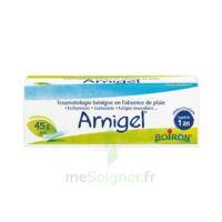 Boiron Arnigel Gel T(alumino-plastique)/45g à SAINT-MARCEL