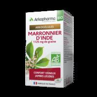 Arkogélules Marronnier D'inde Bio Gélules Fl/45 à SAINT-MARCEL