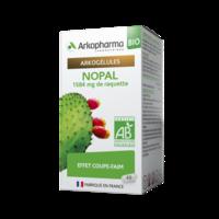 Arkogelules Nopal Bio GÉl Fl/45 à SAINT-MARCEL