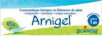 Boiron Arnigel Gel T/45g à SAINT-MARCEL